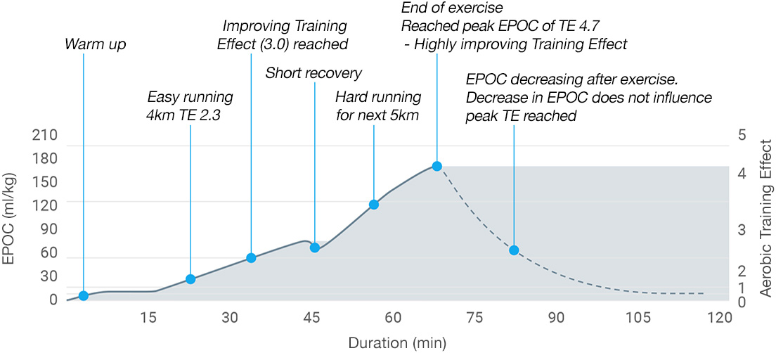 A graph showing excess post-exercise consumption derived from heart rate data during exercise.